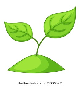Sprout icon. Cartoon illustration of sprout vector icon for web