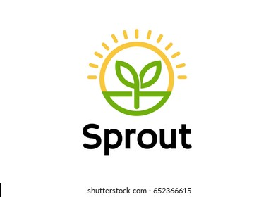 Sprout Leaf Circle Sun Logo  Design Illustration
