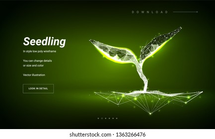 Sprout or seedling. Concept for a startup or start a new life. Abstract illustration isolated on green background. Low poly wireframe. Particles are connected in a geometric silhouette
