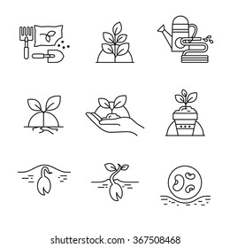 Sprouting seeds and home gardening Thin line art icons. Linear style illustrations isolated on white.