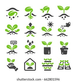 sprout,plant icon