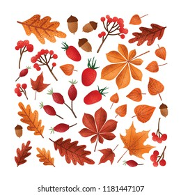 Square backdrop with textured fallen tree autumn leaves or dried foliage, acorns, nuts, berries on white background. Elegant seasonal decoration. Colorful vector illustration in modern trendy style.