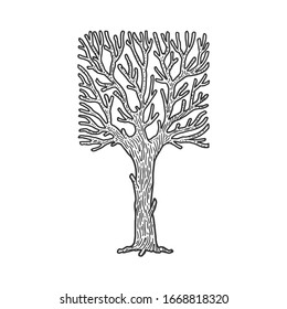 square crown tree sketch engraving vector illustration. T-shirt apparel print design. Scratch board imitation. Black and white hand drawn image.