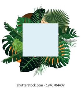 square frame with leaves - banana, taro and palm leaves - vector frame leaves high resolution
