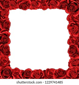 Square frame of red blossom rose scarlet flowers. Clip-art vector template for greeting card, wedding or Valentines day.