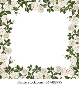 Square frame of white blossom rose flowers. Vector template for greeting card, wedding or Valentine's day.