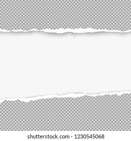 Squared ripped grey paper for text or message are on white background. Vector illustration