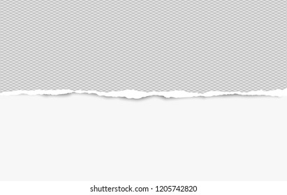 Squared ripped horizontal paper strip for text or message on white background