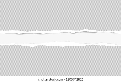 Squared ripped horizontal paper strips for text or message on white background