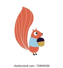 Squirrel with acorn, woodland animal, vector illustration
