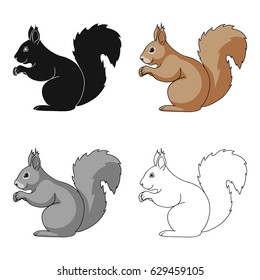 Squirrel is a forest animal. The squirrel has a fluffy tail. The squirrel ears with a brushAnimals single icon in cartoon style vector symbol stock illustration web.