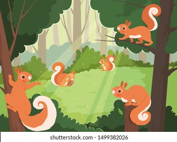 Squirrel Tree High Res Stock Images   Shutterstock