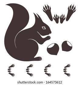 Squirrel. Isolated animal on white background. Vector illustration
