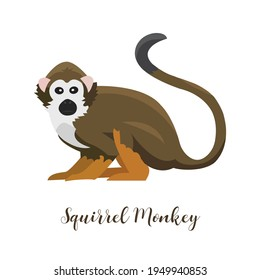 Squirrel monkey cartoon handdrawn vector illustration brown body white face orange legs with a long tail