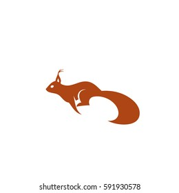Squirrel running - vector illustration