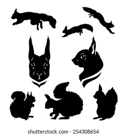 Squirrel set of silhouettes vector