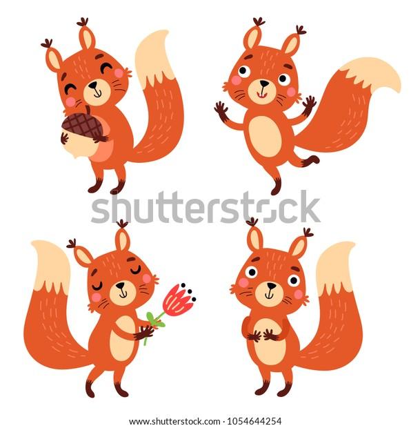 Squirrel, vector character