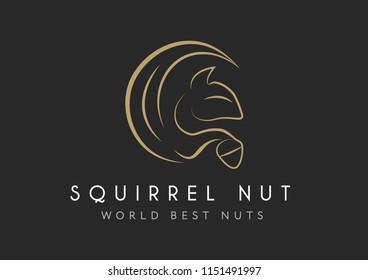 Squirrel vector icon isolated onblack background, squirrel logo concept. Squirrel with hazelnut Logo design. Nut logotype design.