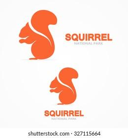 Squirrel vector logo