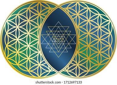 Sri Yantra inside Vesica Piscis composed of two Flowers of Life, Sacred Geometry