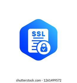 SSL vector icon for web