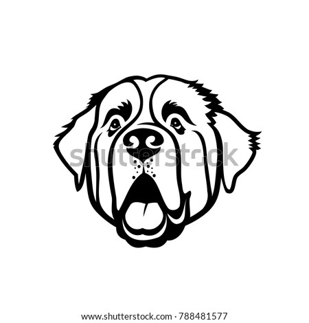 St Bernard Dog Isolated Outlined Vector Stock Vector Royalty Free