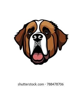 St. Bernard dog - isolated vector illustration
