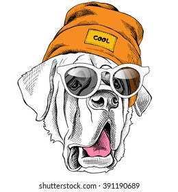 St. Bernard portrait in a Hipster hat and with sunglasses. Vector illustration.
