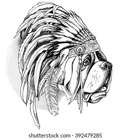 St. Bernard portrait in the Indian Feather Headdress. Vector illustration.