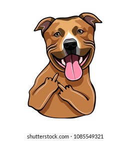 Staffordshire Terrier dog. Middle finger gesture. Dog portrait. Vector illustration.