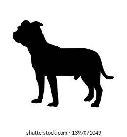 Staffordshire Terrier Dog Silhouette. Smooth Vector Illustration.