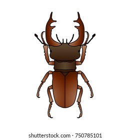 stag-beetle. Lucanus cervus.  hand-drawn Sketch of stag-beetle isolated on white background. Vector illustration