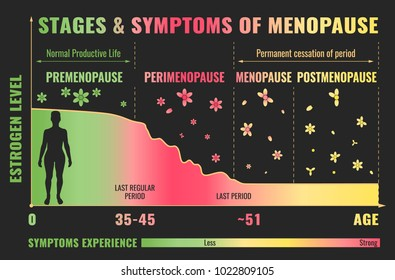Stages and symptoms of menopause. Estrogen level average percentage from the birth to the age of eighty years. Vector illustration. Medical infographic useful for educational poster graphic design.