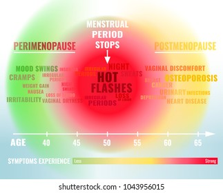 Stages and symptoms of menopause. Estrogen level average percentage from the birth to the age of 65 years. Vector illustration. Medical infographic useful for an educational poster graphic design.