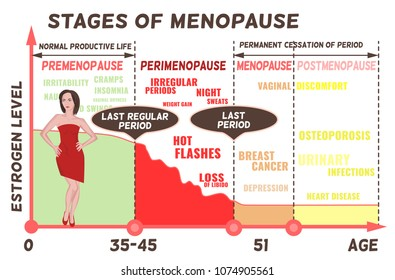 Stages and symptoms of menopause. Estrogen level average percentage from the birth to the age of eighty years. Medical infographic useful for an educational poster graphic design. Vector illustration.