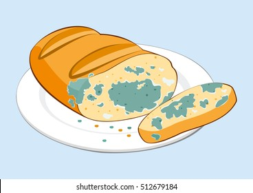 Stale moldy food. Inedible moldy piece of bread on plate. Isolated vector illustration
