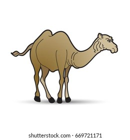 standing brown color camel-vector drawing
