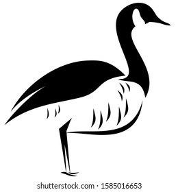 Standing Canada goose black and white vector line drawing