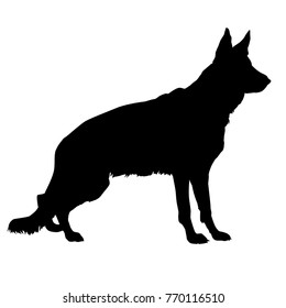 Standing dog. Black silhouette German Shepherd contour on a white background