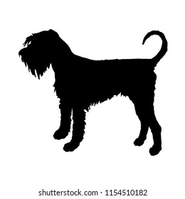 Standing dog. Black silhouette  Giant Schnauzer contour on a white background
