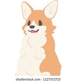 A standing dog (corgi)