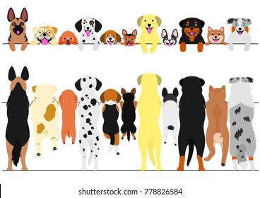 standing dogs front and back border set