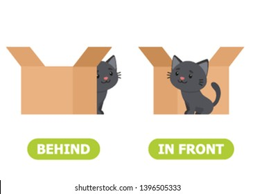 Сat is standing in front of the box and behind the box. Illustration of opposites in front and behind.  Card for teaching aid, for a foreign language learning. Vector illustration on white background.