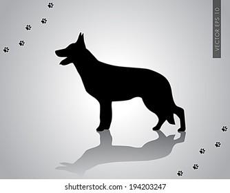 Standing German Shepherd Silhouette - vector