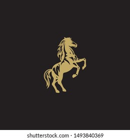 Standing Golden Horse with Dark Background. Horse Mascot for Powerful and Strong Concept. Gold Mustang on Black.