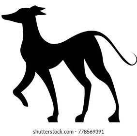 Standing Italian Greyhound Vector Illustration, Black Silhouette.