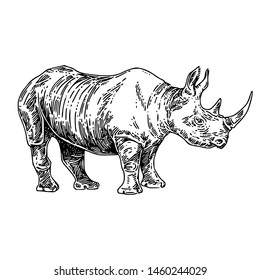Standing  large rhino. Sketch. Engraving style. Vector illustration.
