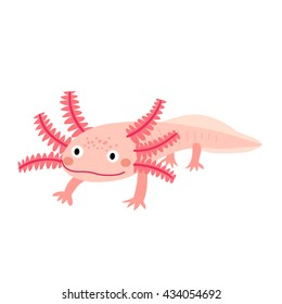 Standing mexican salamander axolotl cartoon character with pink color isolated on white background.
