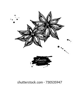 Star Anise Vector drawing. Hand drawn sketch. Seasonal food illustration isolated on white. Engraved style spice and flavor object. Cooking and aromatherapy ingredient.