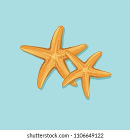Starfish isolated vector icon design